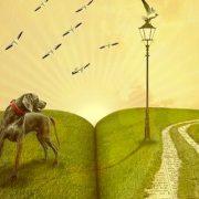 Bienfait lecture dream