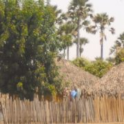 Cases Senegal bénévole